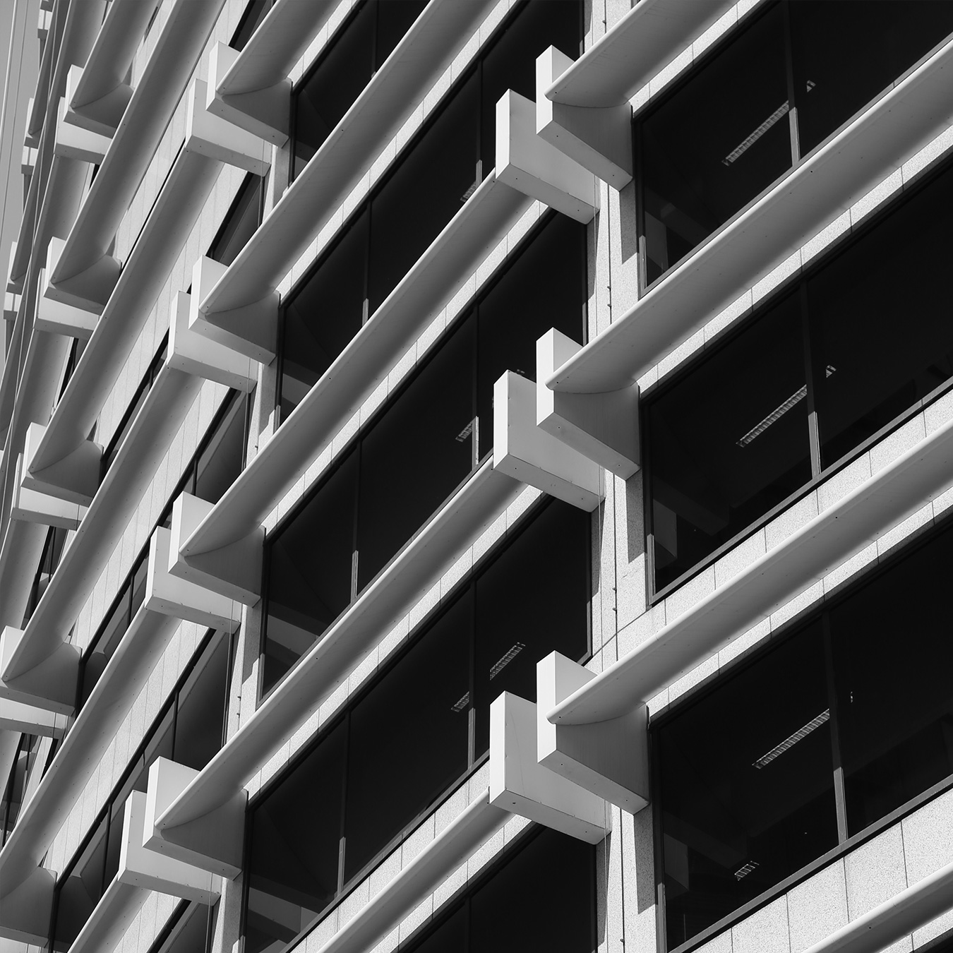 Tall Building Exterior in Black and White