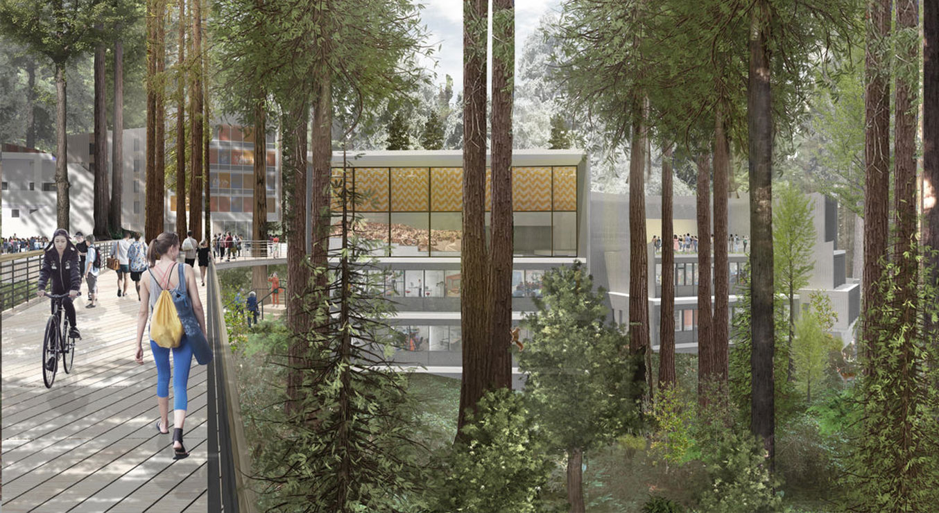 Kresge College Renewal at UC Santa Cruz with pedestrian bridge and mass timber buildings in the redwoods